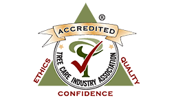tree care industry association home