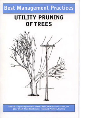 Best Management Practices Utility Pruning - English