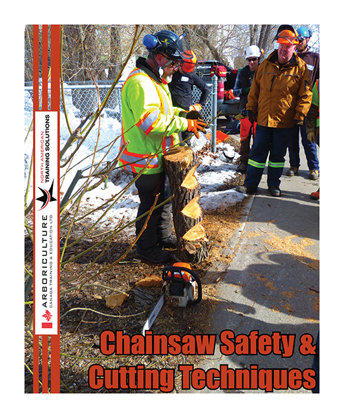 Chainsaw Safety & Cutting Techniques