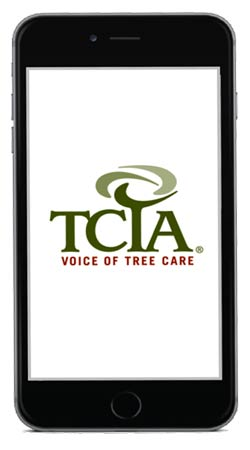 Cell phone with TCIA logo