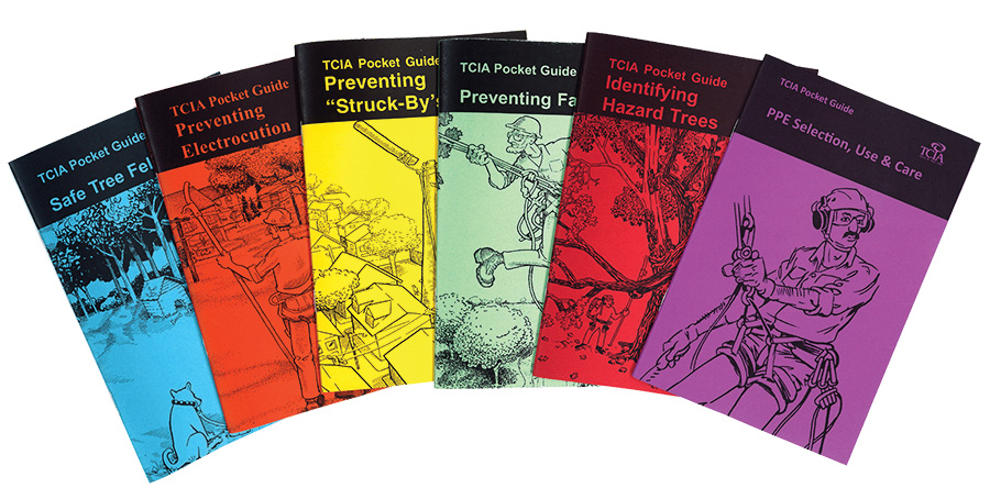 Pocket Guide Set (All Six) - English