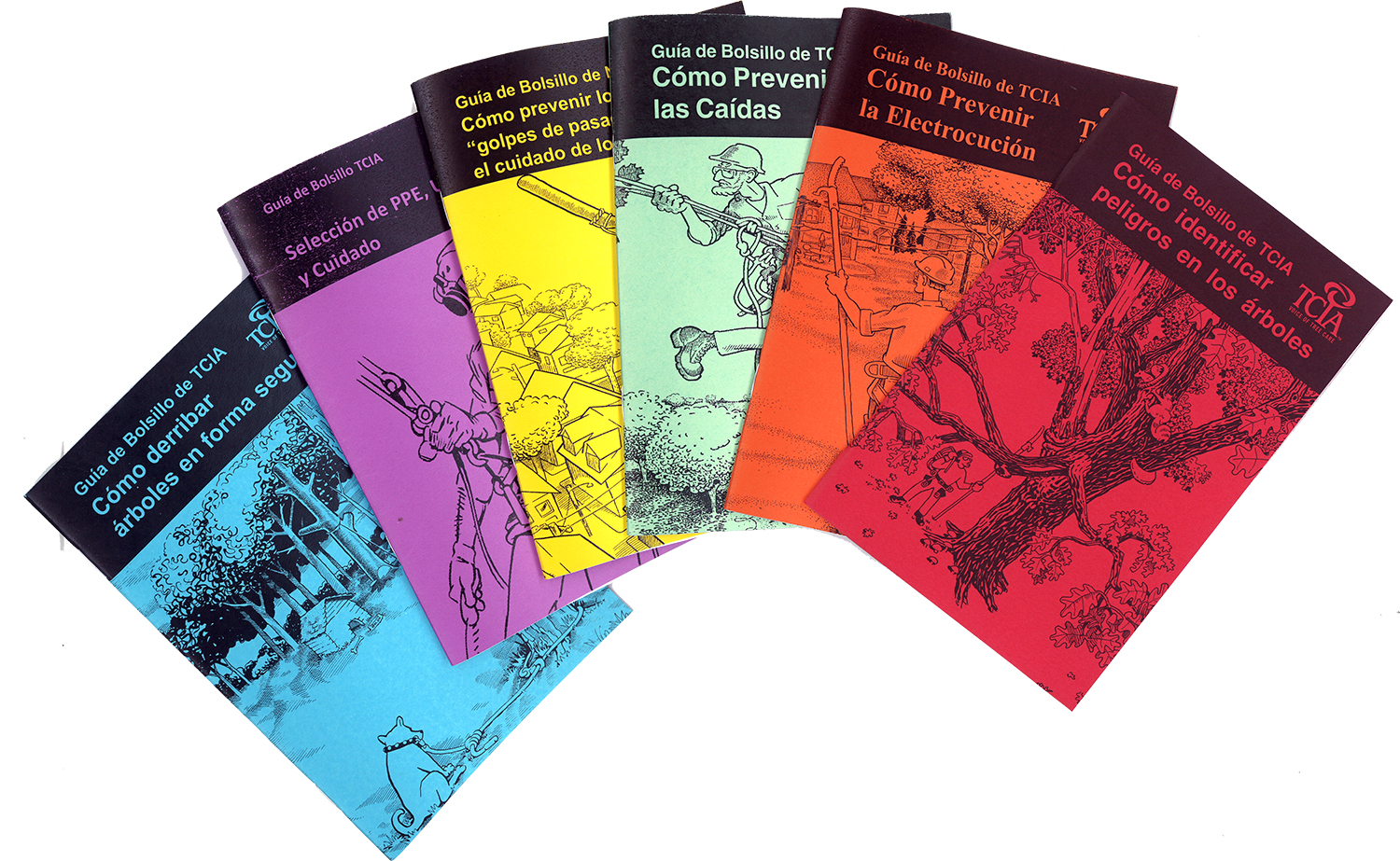 Pocket Guide Set (All 6) - Spanish