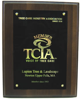 TCIA Membership Plaque